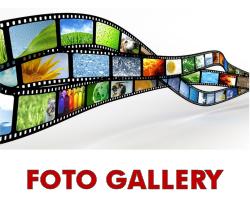 Foto Gallery della FP CGIL Piemonte